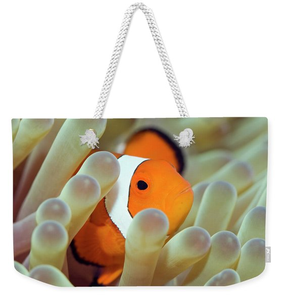 Tropical Fish Clownfish Weekender Tote Bag