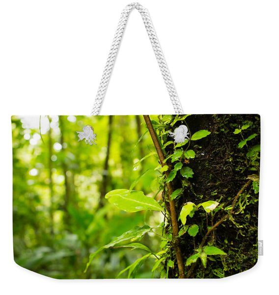 Trunk Of The Jungle Weekender Tote Bag
