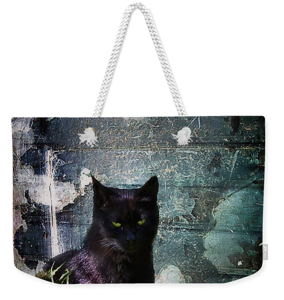 Truth Or Stare... Weekender Tote Bag