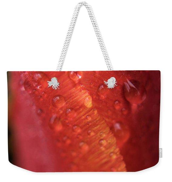 Tulip Bulb Raindrops-1701 Weekender Tote Bag
