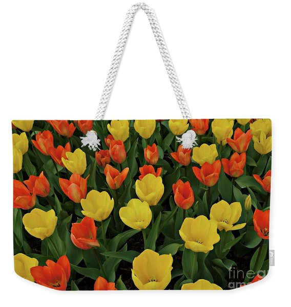 Weekender Tote Bag featuring the photograph Tulip Chorus by Patricia Strand