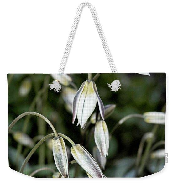 Tulipa Turkestanica Weekender Tote Bag