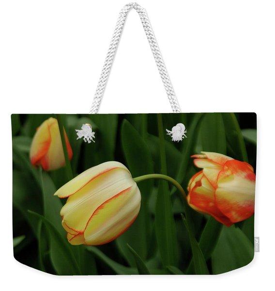 Nodding Tulips Weekender Tote Bag