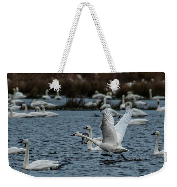 Tundra Swan And Liftoff Head Start Weekender Tote Bag