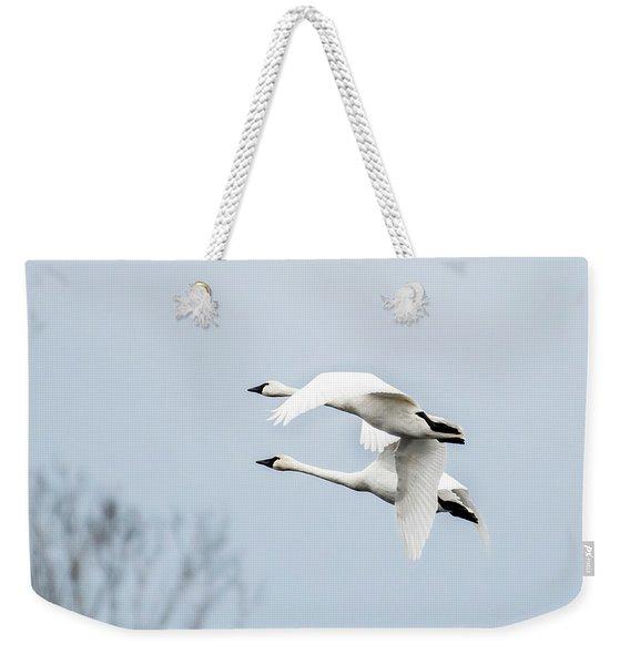Tundra Swan Lift-off Weekender Tote Bag