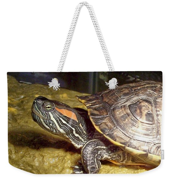 Weekender Tote Bag featuring the digital art Turtle Reflections by Deleas Kilgore