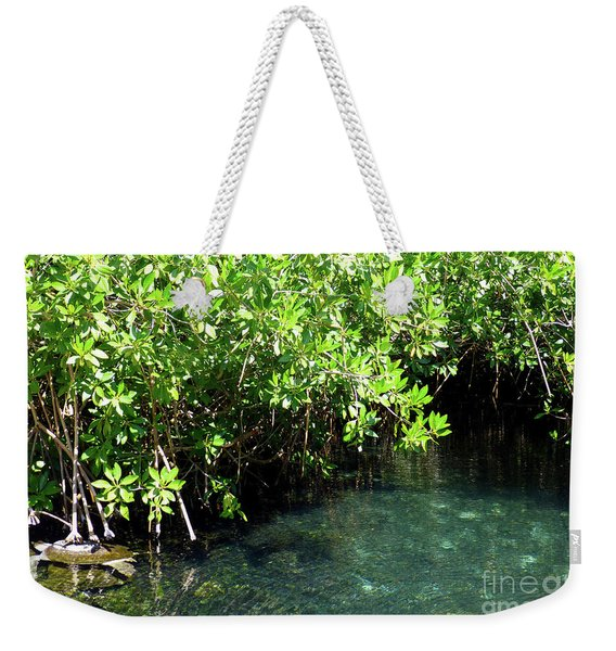 Turtle Swim Weekender Tote Bag