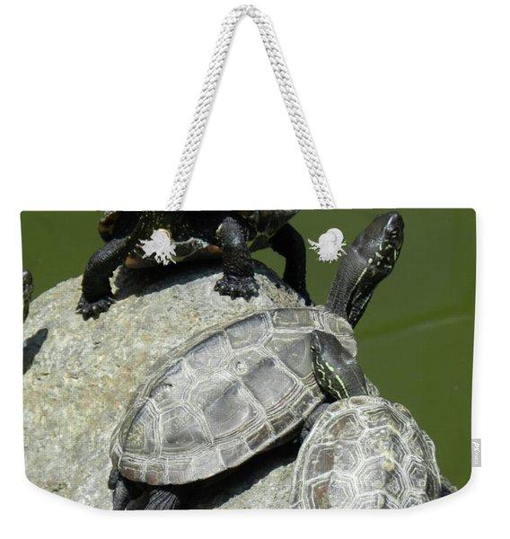 Turtles At A Temple In Narita, Japan Weekender Tote Bag