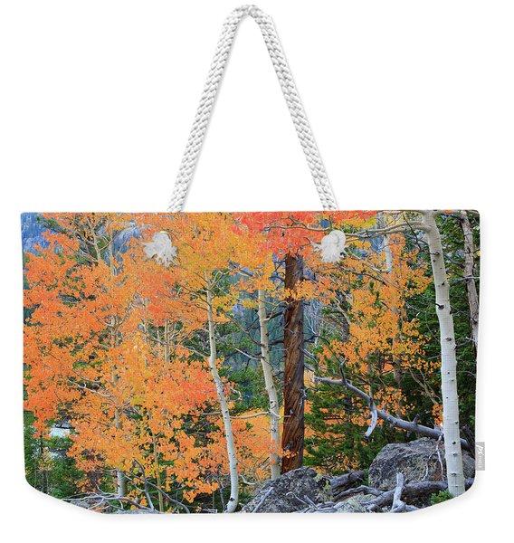Twisted Pine Weekender Tote Bag