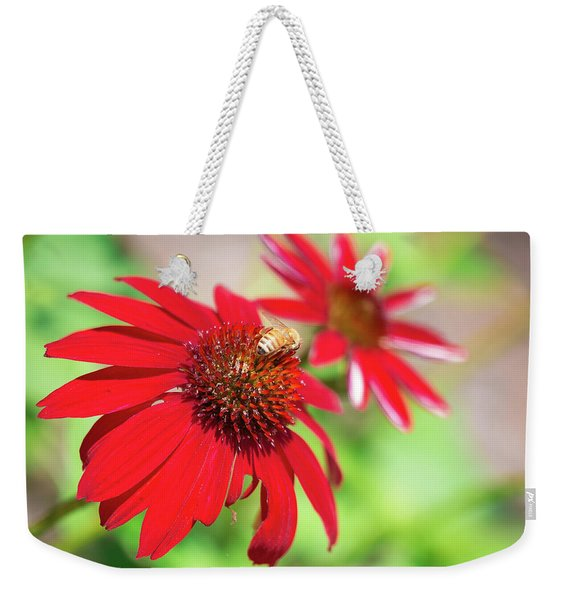 Weekender Tote Bag featuring the photograph Two Flowers For Every Bee by Brian Hale