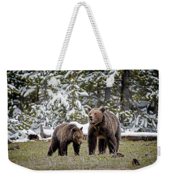 Two Grizzly Bears Weekender Tote Bag