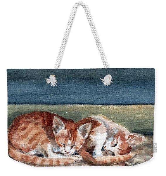 Two Kittens Weekender Tote Bag