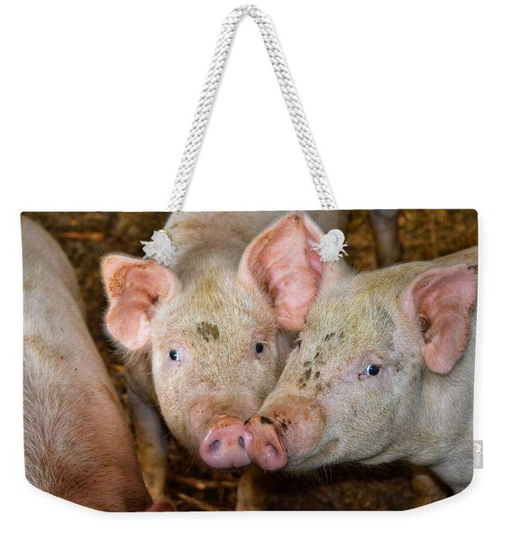 Two Pigs Weekender Tote Bag