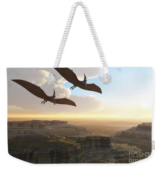 Two Pterodactyl Flying Dinosaurs Soar Weekender Tote Bag