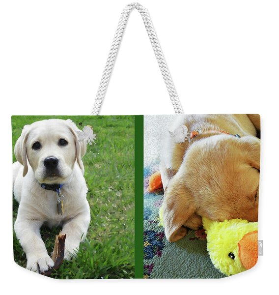 Two Puppies Two Yellow Labs Weekender Tote Bag
