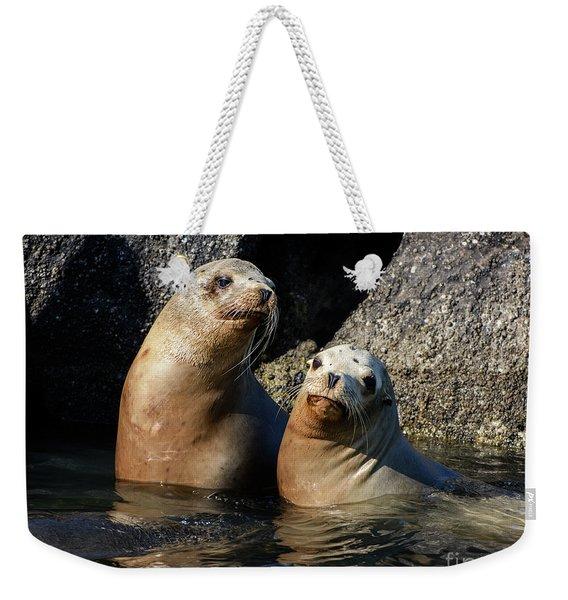 Two Quiet Sea Lions Weekender Tote Bag