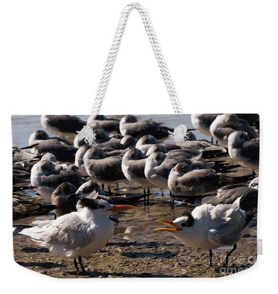 Two Royal Terns Arguing At The Beach Weekender Tote Bag