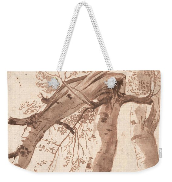 Two Silver Birches, The Front One Fallen Weekender Tote Bag