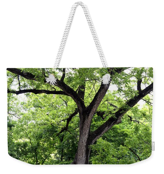 Two Tone Tree Weekender Tote Bag