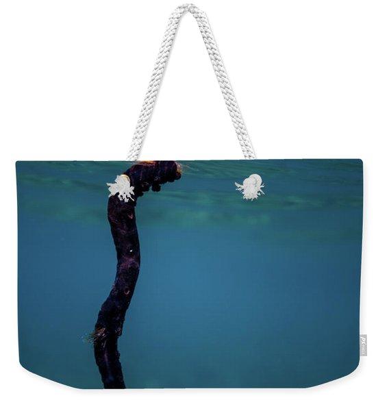 Underwater Branch Weekender Tote Bag