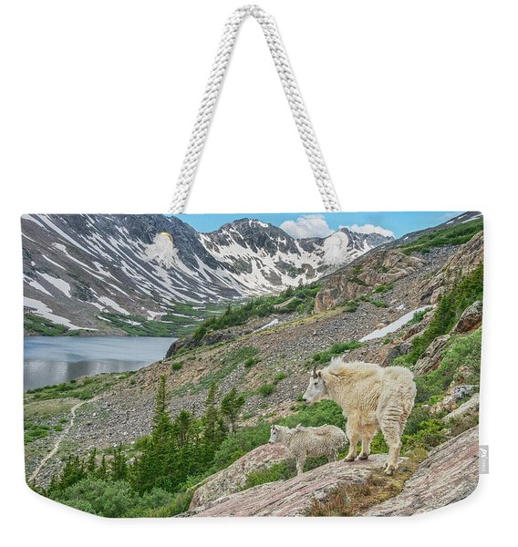 Until One Has Loved An Animal, A Part Of One's Soul Remains Unawakened.  Weekender Tote Bag