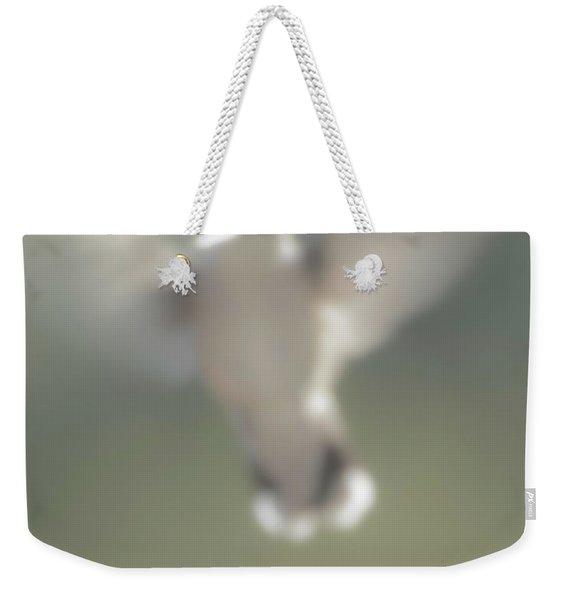 Untitled Hummingbird Weekender Tote Bag