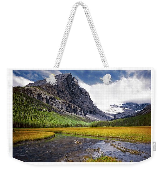 User Friendly Weekender Tote Bag