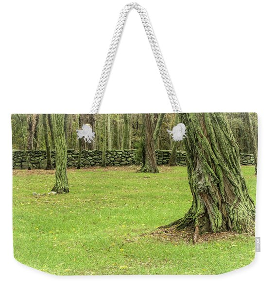 Weekender Tote Bag featuring the photograph Venerable Trees And A Stone Wall by Nancy De Flon
