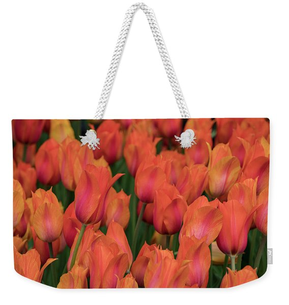 Vibrant Whispers Weekender Tote Bag