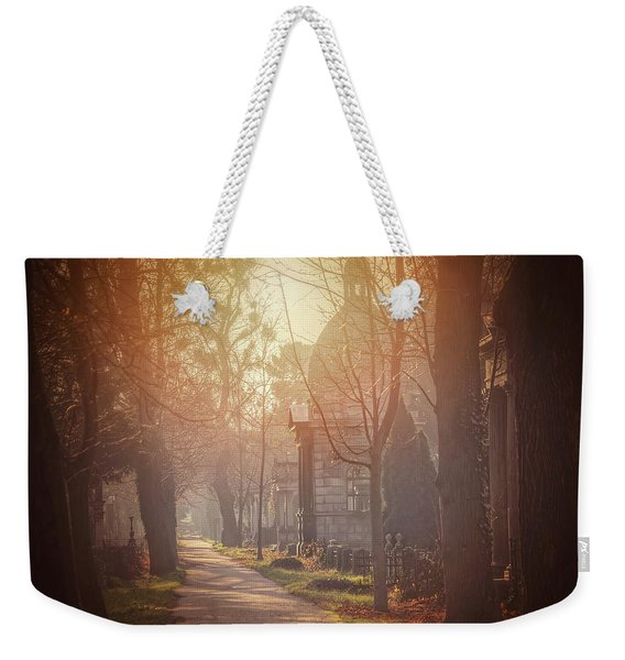 Vienna Zentralfriedhof In Winter  Weekender Tote Bag