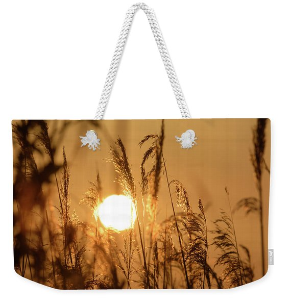 View Of Sun Setting Behind Long Grass B Weekender Tote Bag