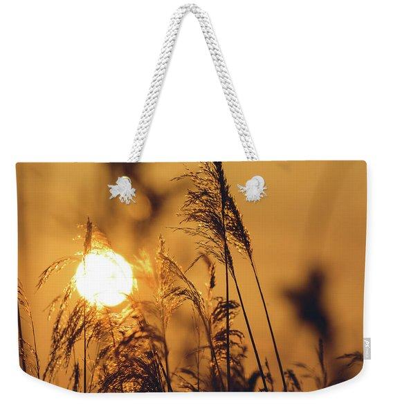 View Of Sun Setting Behind Long Grass C Weekender Tote Bag