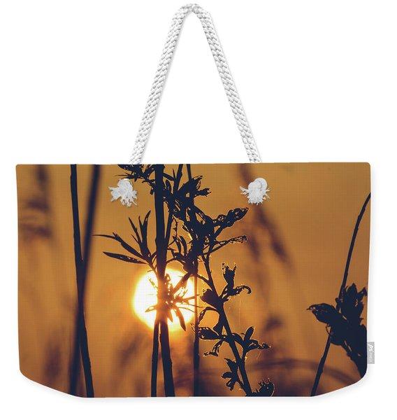 View Of Sun Setting Behind Long Grass D Weekender Tote Bag