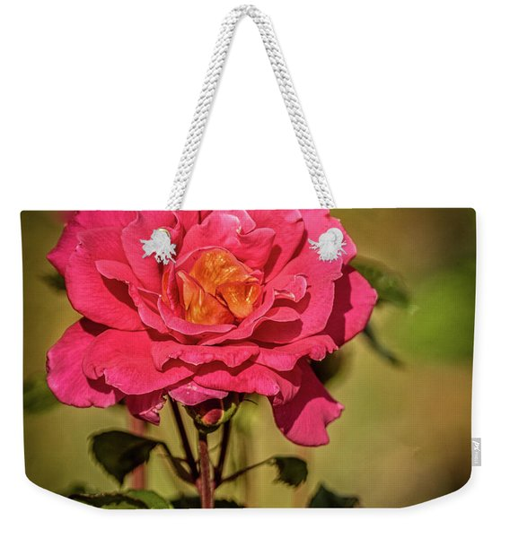 Vignetted  Rose Weekender Tote Bag