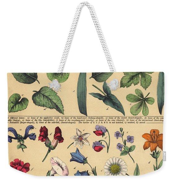 Vintage Botanical Print Showing Variety Of Leaves And Flowers Weekender Tote Bag
