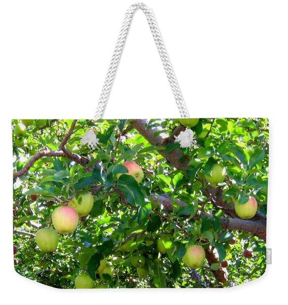 Vintage Tractor In Apple Orchard Weekender Tote Bag