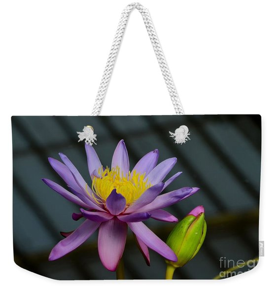 Violet And Yellow Water Lily Flower With Unopened Bud Weekender Tote Bag