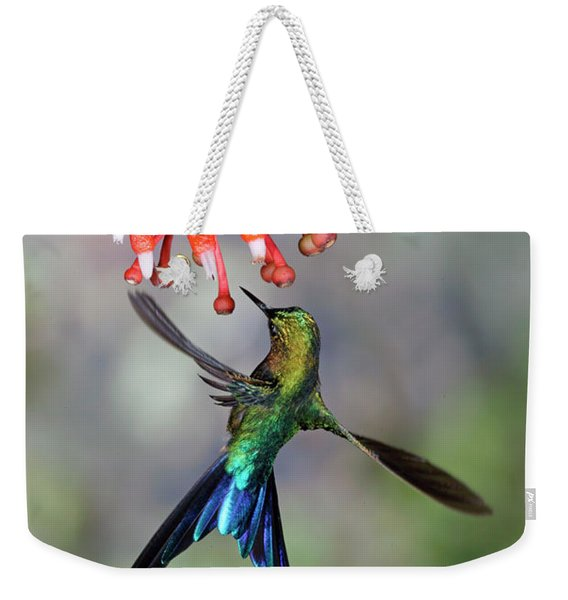 Violet-tailed Sylph Feeding Weekender Tote Bag
