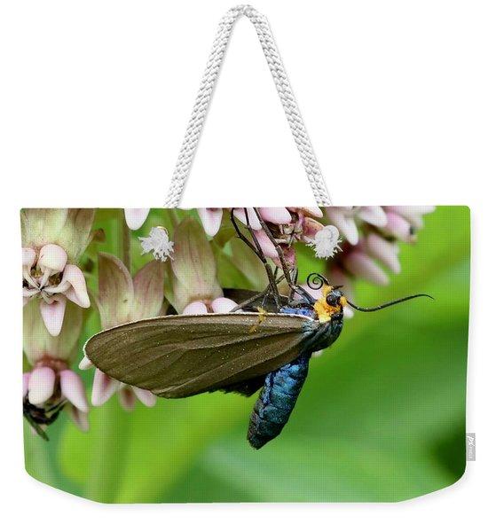 Virginia Ctenucha Moth Weekender Tote Bag