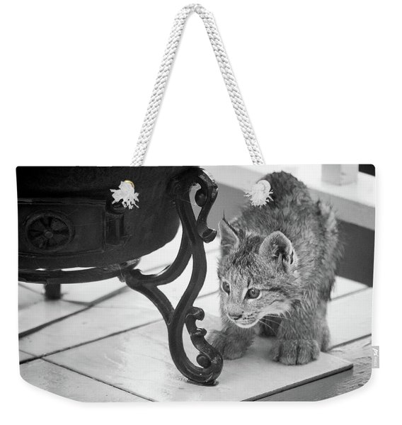 Weekender Tote Bag featuring the photograph Wait For It by Tim Newton