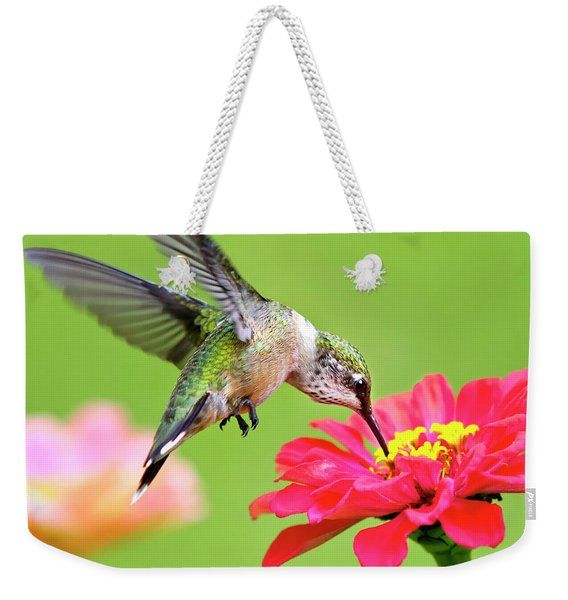 Waiting In The Wings Hummingbird Square Weekender Tote Bag