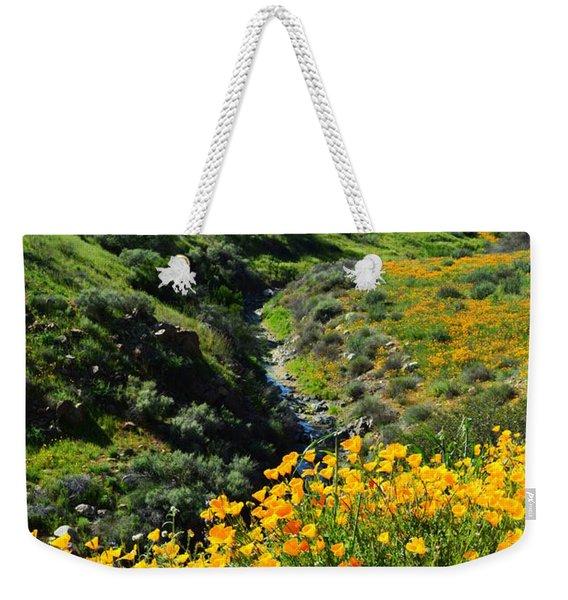 Walker Canyon Vista Weekender Tote Bag