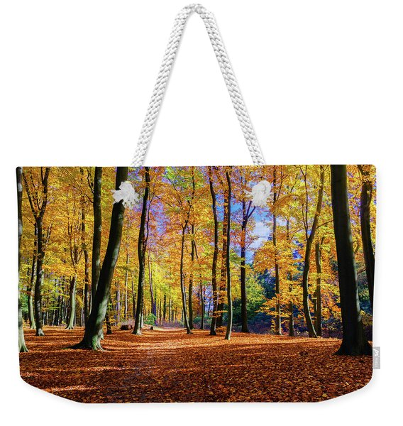 Weekender Tote Bag featuring the photograph Walking In The Golden Woods by Dmytro Korol