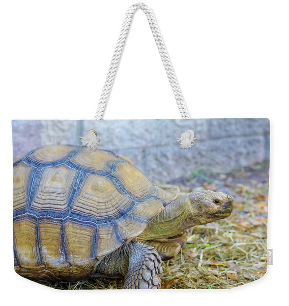 Walking Turtle Weekender Tote Bag
