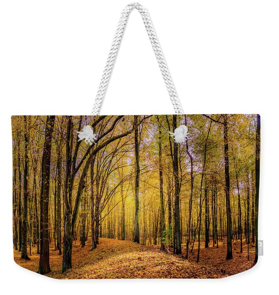 Weekender Tote Bag featuring the photograph Walkway In The Autumn Woods by Dmytro Korol