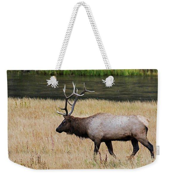 Wandering Elk Weekender Tote Bag