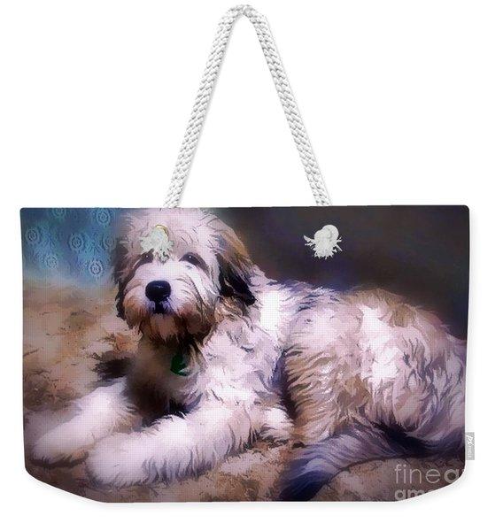 Want A Best Friend Weekender Tote Bag