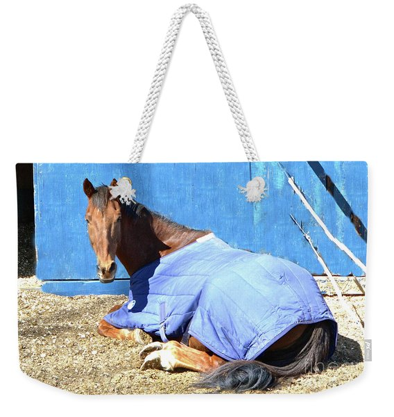 Warm Winter Day At The Horse Barn Weekender Tote Bag