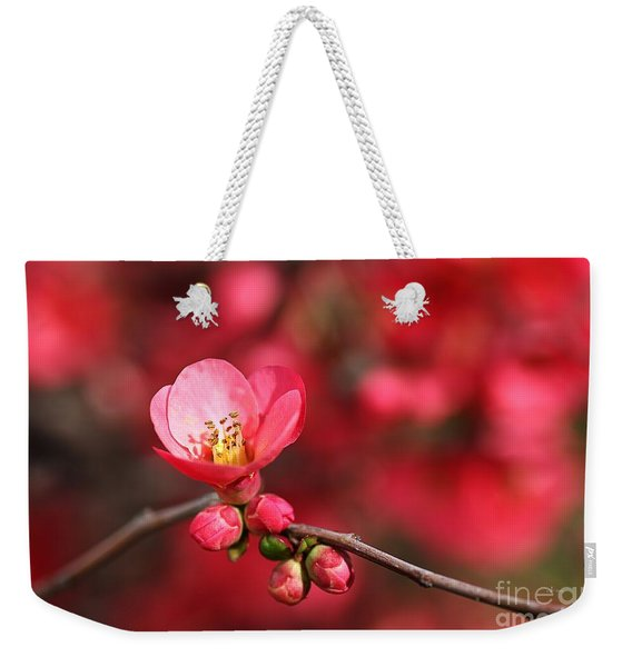 Warmth Of Flowering Quince Weekender Tote Bag
