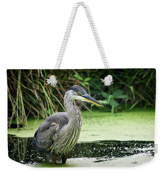 Wary Blue Heron Weekender Tote Bag